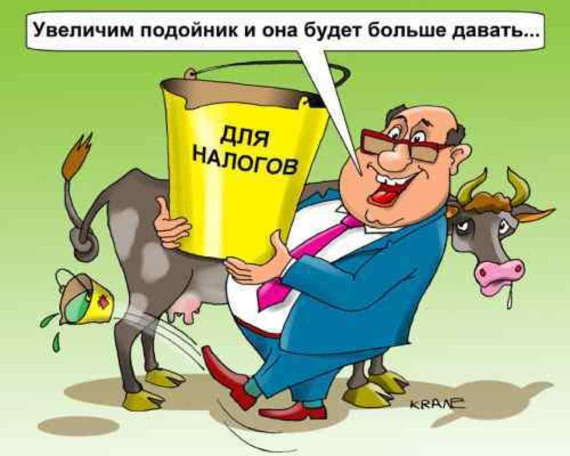 Картинки о налогах с юмором